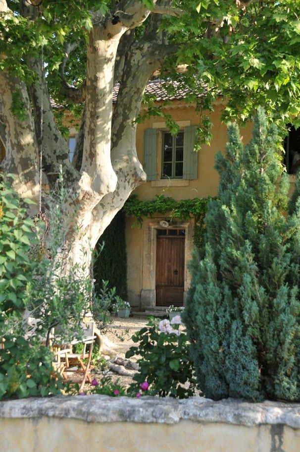 Maison de Provence - love the way the house peeks through the trees.