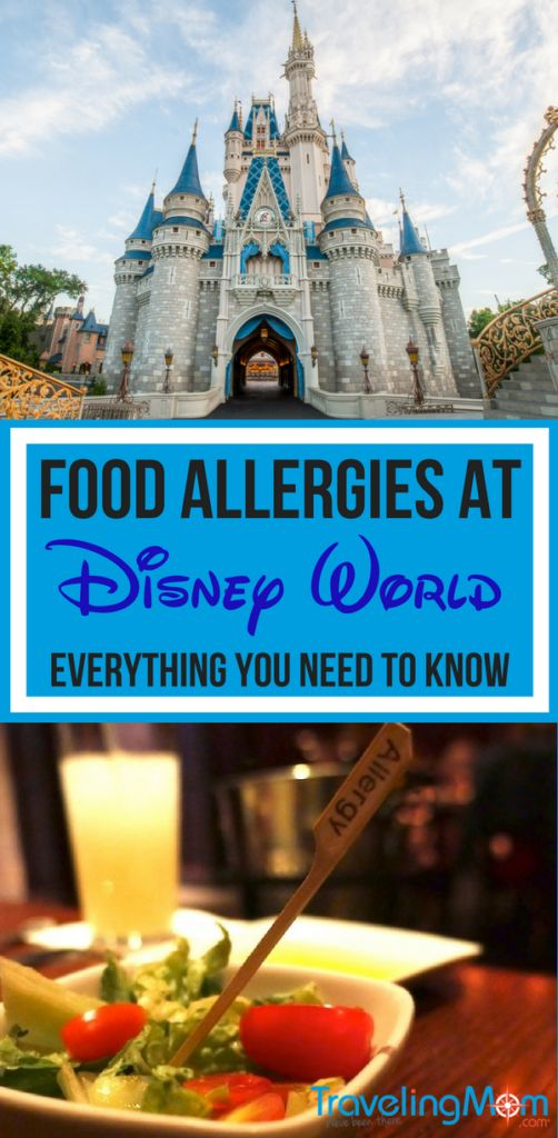 Everything you need to know about handling food allergies at Walt Disney World: Disney Allergy Menus, navigating buffets, pre-trip preparation and more.