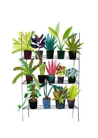 Plant Nursery – Signed & Numbered