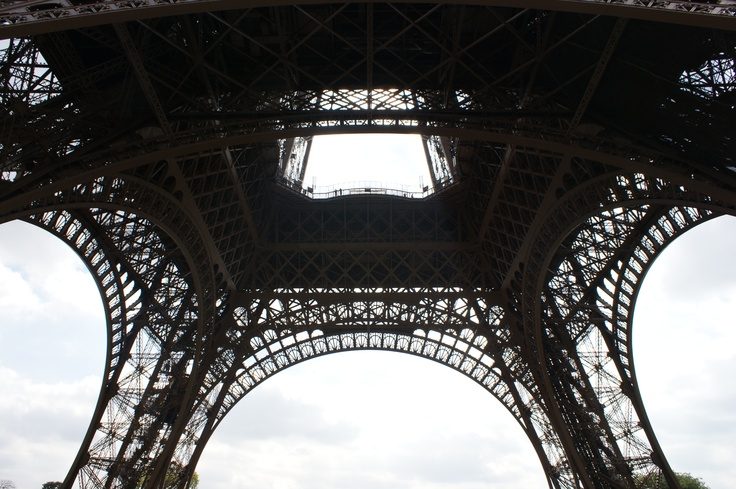 The Eiffel Tower in view of frog 5