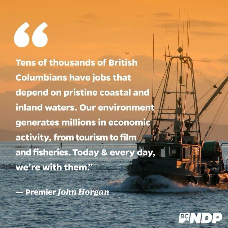 #JustinTrudeausPipeline yet Trudy  fails to recognize #BC has its own economy to protect. Not to mention our air, water, marine life and #FN #UNDRIP too adhere to. #bcpoli #cdnpoli