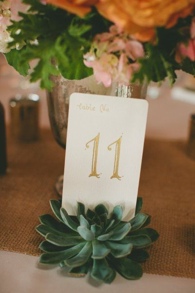 table numbers held in place by succulents Photography by Richelle Dante Photoraphy / richelledante.com, Event Planning by Kimberly Conners Events / kimberlyconnersevents.com/blog/, Floral Design by Designs by Tricia / floraldesignsbytricia.com/