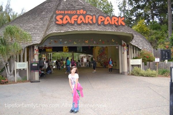 Tips for Visiting San Diego Zoo Safari Park (not to be confused with San Diego Zoo)