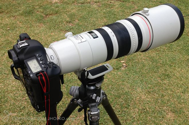 Canon And Nikon 200 400 Lenses Photography Gear Cameras And Accessories Best Camera