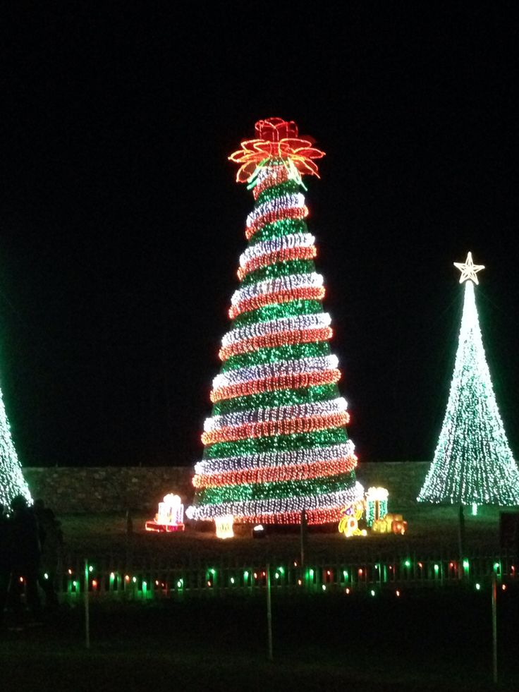 Garvan Woodland Gardens at Christmas timeimpressive light