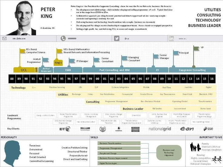 Peter King infographic resume on SlideShare
