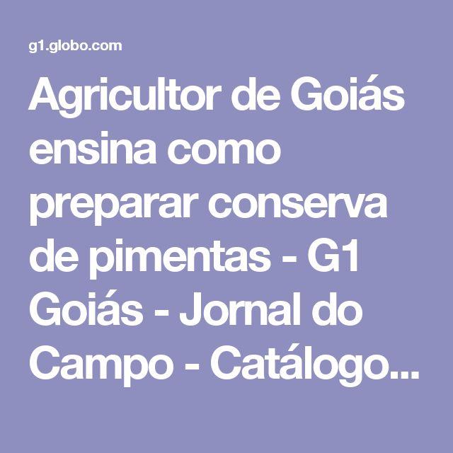 Agricultor de Goiás ensina como preparar conserva de pimentas - G1 Goiás - Jornal do Campo - Catálogo de Vídeos