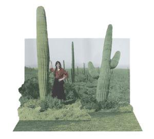 How to Make a Pop-Up Photograph » Curbly   DIY Design Community