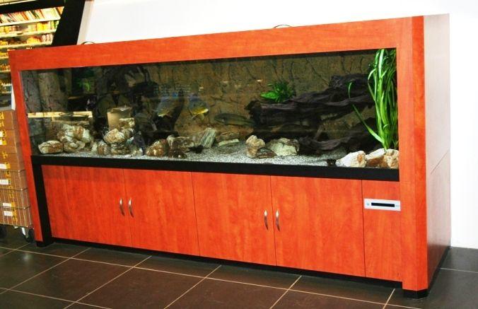 FOTO'S VAN AQUARIA VELDHUIS & VIJVERCENTRUM ENSCHEDE - Speciaalzaak voor aquarianen en vijver- liefhebbers, met advies en ondersteuning bij aankoop van vissen, planten en benodigdheden. Een van de grootse aquaria/vijvercentrums van europa