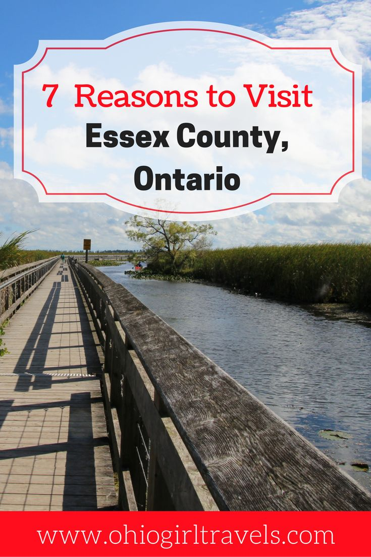 If you haven't been to Essex County, Ontario yet, you need to plan a trip there right now! See why we loved Essex County and why we can't wait to make it back there again soon. Don't forget to save this to your travel board.    Essex County Ontario | guide to Essex County | things to see in Essex County | things to do in Essex County | food and drinks to try in Essex County|