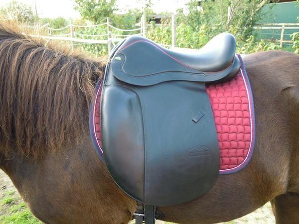 Islandpferde Sattel Hilbar » Zubehör Reit-/Pferdesport aus Dahlwitz-Hoppegarten Hoppegarten