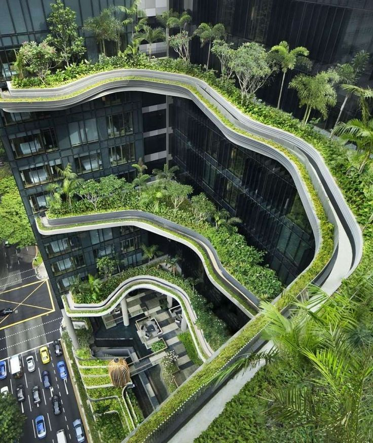 Grün statt Grau: Pflanzen erobern die Architektur