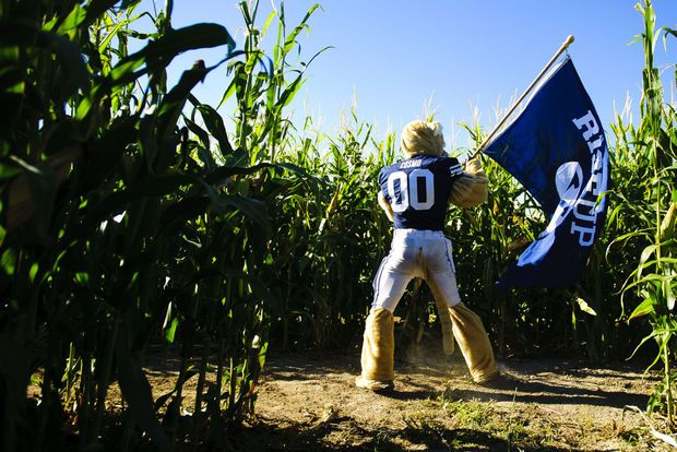 BYU's mascot Cosmo leads his team during a race through the corn maze