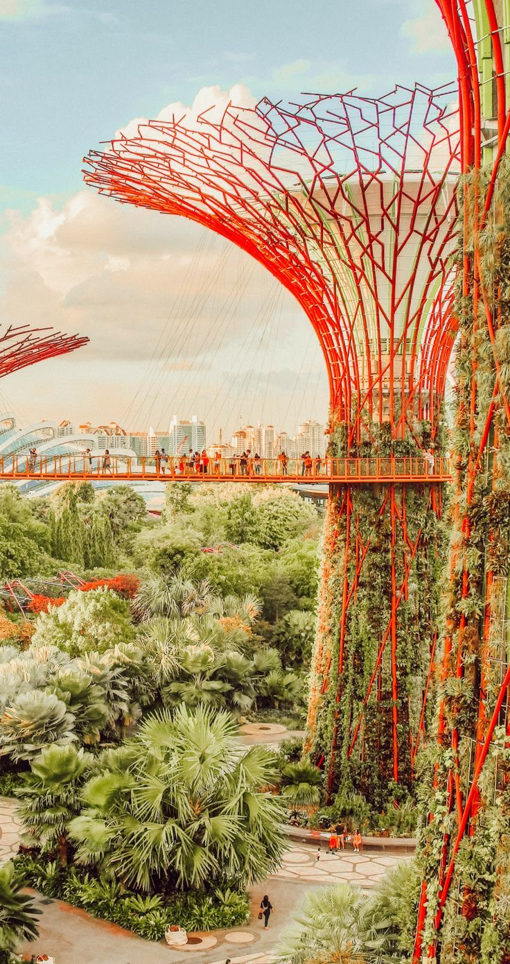 10 Must Visit Places In Singapore You Won T Want To Miss Asia Photography Asia Travel Beautiful Places Asia Travel