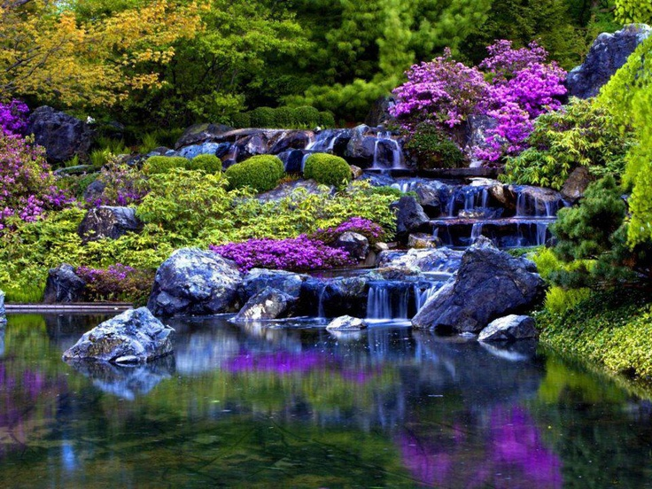 ;;;: Waterf, Ponds, Natural Scene, Peace, Color Patterns, Dreams Gardens, Summer Natural, Free Quotes, Purple Flower