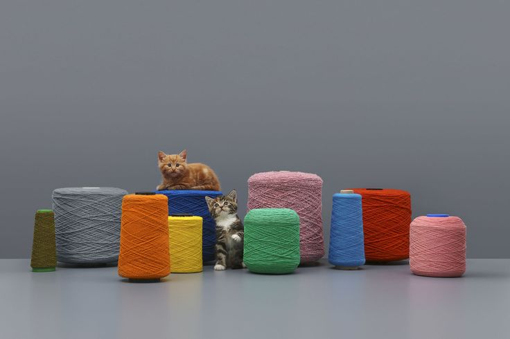 Lifeswap? Kvadrat's 2016 ad campaign by GTF