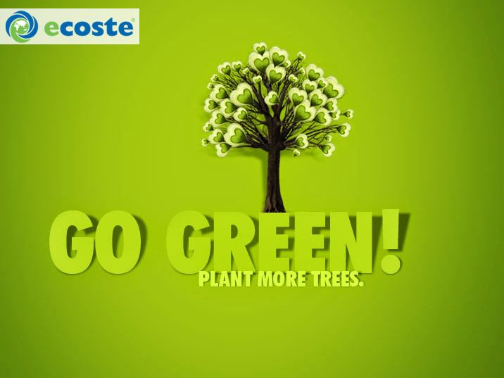 Be Eco- Friendly & Go Green
