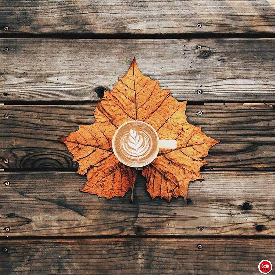 www.sofaroom.com Yeni güne bir kahve ile Günaydın :) #sofaroom #yuvarlakyatak #yatak #kalite #tasarım #moda #konfor #şık #rahat #dizayn #dekor #dekorasyon #mimar #içmimar #proje #günaydın #goodmornıng #beautiful #güzel #like4like #20likes #nature #instagood #intagramhub #photooftheday #oda #yatakodası #tarz #kahve