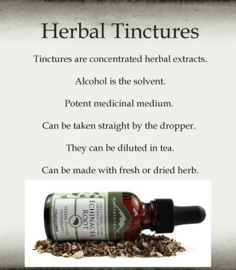 Herbal tinctures -- how to make them from the woods.