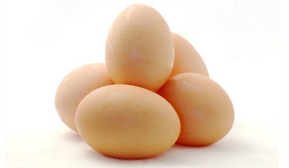 Understanding ovulation