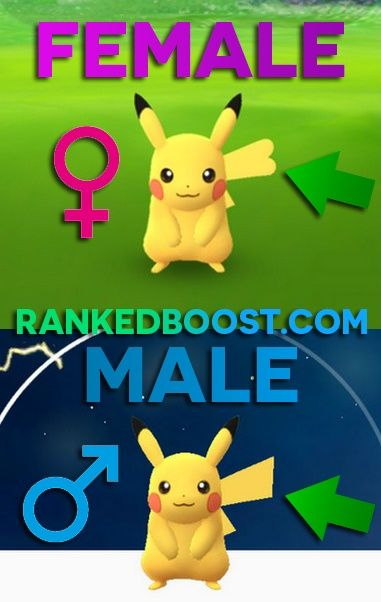 Pokemon GO Genders Chart | Chance Rate To Find Male and Female Pokemon In  Pokemon GO