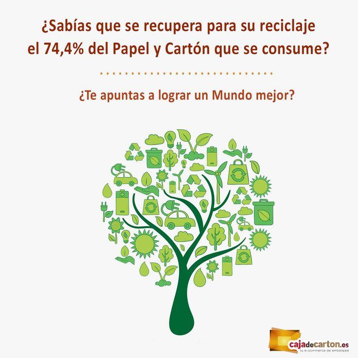 ¿Sabías que se recupera para su reciclaje el 74,4% del Papel y Cartón que se consume? ¿Te apuntas a lograr un Mundo mejor?