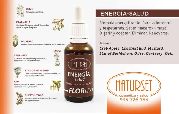 BACH Energia Salud