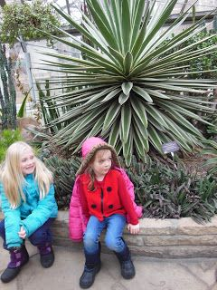 Fun things to do with kids: Allan Gardens Conservatory - Toronto