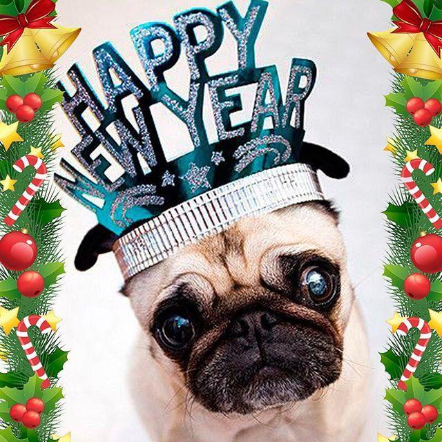 Festejamos juntos todo el año pero celebramos más cuando se termina dejándonos muchas alegrías y buenos recuerdos. ¡ #FelizAñoNuevo! te desea #CVP