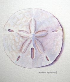sand dollar tattoo - thinking for maybe my other foot | // ink ...