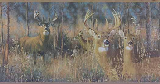 17 best ideas about deer wallpaper on pinterest cute for Deer mural wallpaper