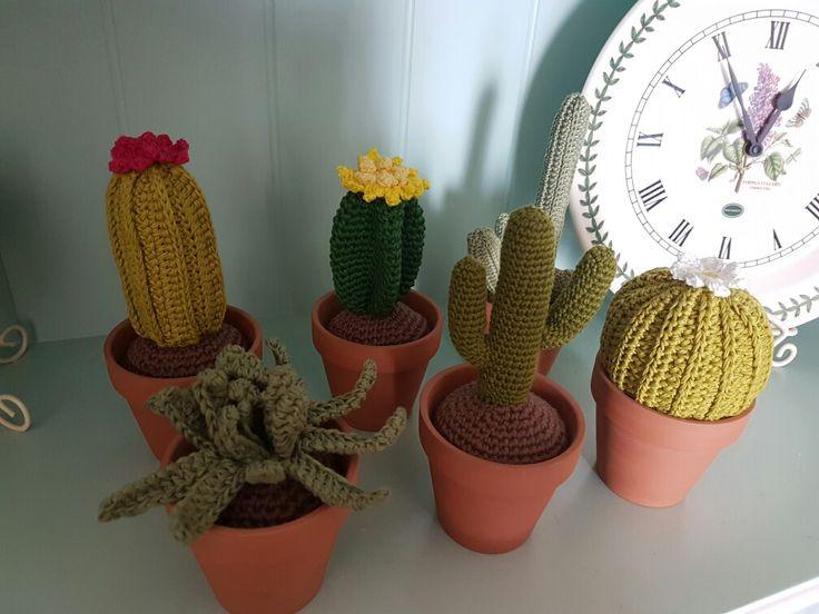 The crochet cactus