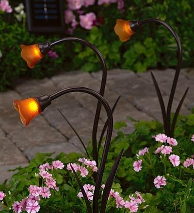 Solar Flower Lights Cool Yard Things I Need Pinterest