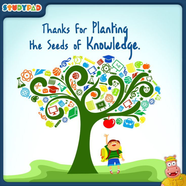 Quotes About Teachers Planting Seeds: 108 Best Qotes Design Create By Pravin Images On Pinterest