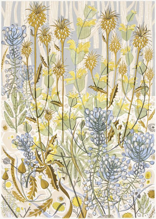 "Angie Lewin's ""Stony Track"" screenprint"