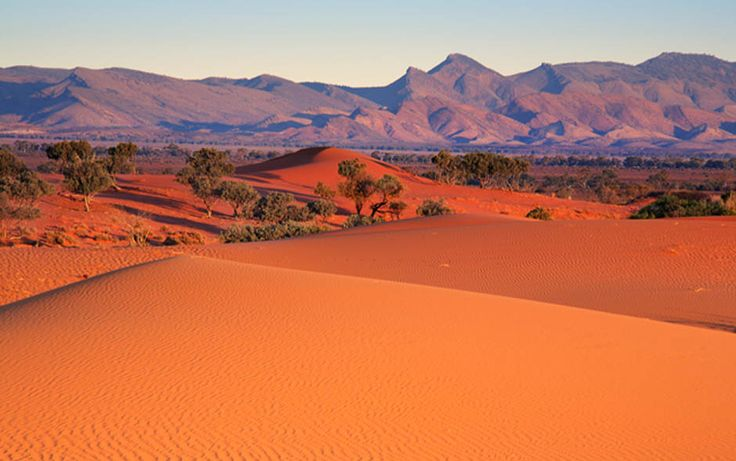 Nilpena Sands, Flinders Ranges. Photo: Peter MacDonald