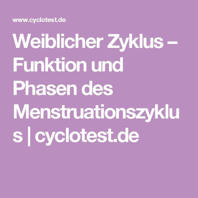Weiblicher Zyklus – Funktion und Phasen des Menstruationszyklus | cyclotest.de