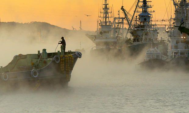 冬の霧港包む 気仙沼湾「けあらし」 | 河北新報オンラインニュース