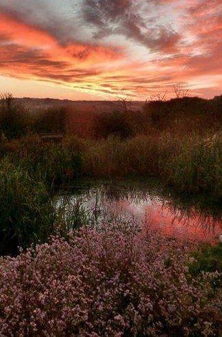 Cerenety Eco Campsite, Cornwall, England