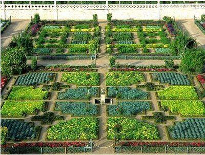 Villandry, France...Now that's a vegetable garden.