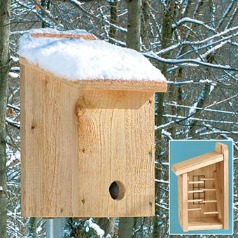 I like this design because there are many stands inside that many birds ca go inside. Also it protects from the raindrops and the snows. And it looks simple outside.