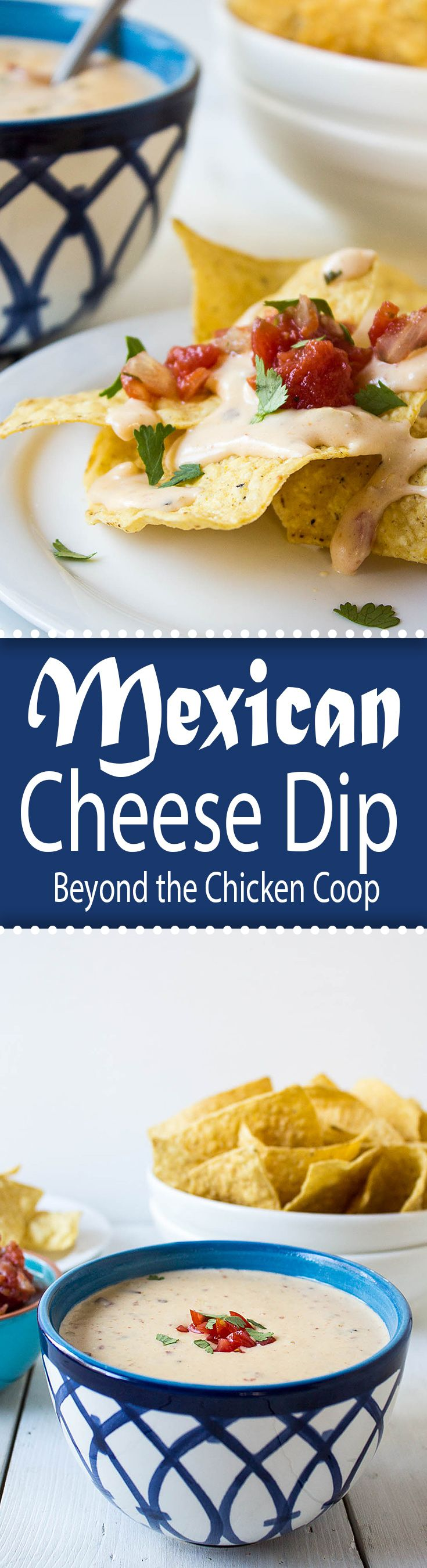 Homemade Mexican Xxx pertaining to best 25+ mexican cheese dips ideas on pinterest | sour cream chip