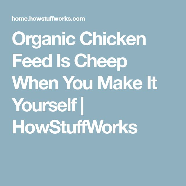 Organic Chicken Feed Is Cheep When You Make It Yourself | HowStuffWorks