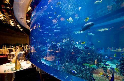 """Al Mahara, Burj Al Arab, Dubai Questo ristorante all'interno del primo hotel 7 stelle al mondo (la famosa """"vela"""") ricrea i fondali sottomarini e i tavoli sono disposti attorno a un gigantesco acquario popolato da ogni specie di pesce tropicale"""