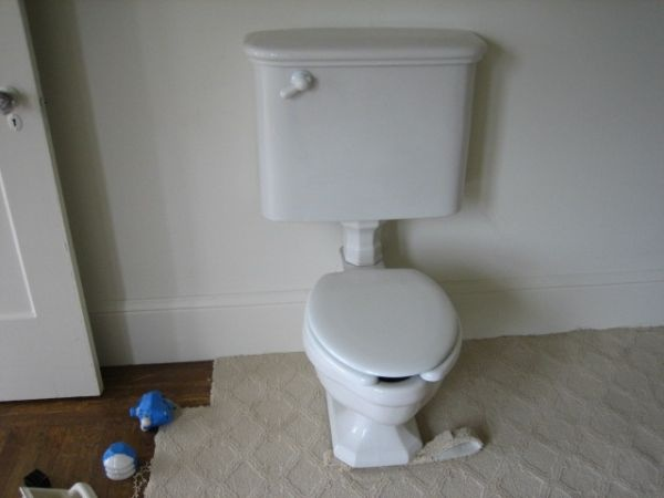 300 Craigslist Vintage Toilet Vs 3x Expensive Toto