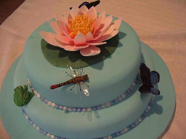 Cake Designs Coffs Harbour : 17 Best images about More Cake on Pinterest Bee hive ...