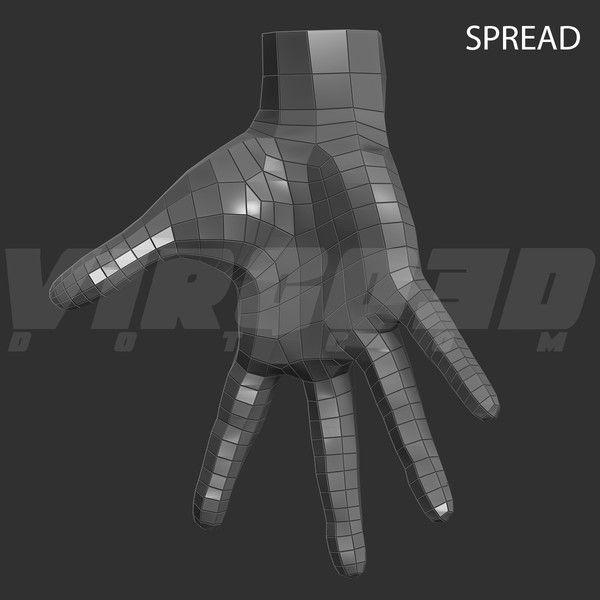 Virgo3D: 3D Model Hand Rigged - Spread