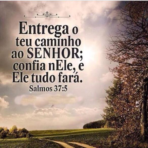 Salmo 37:5 | Grupo de Oração São José 1  Paróquia Nossa Senhora Aparecida da Cocaia Guarulhos – SP