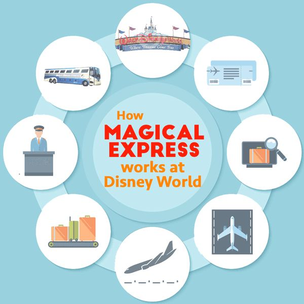How will you get from the Orlando airport to your Disney World resort? Thankfully, Disney has Magical Express buses (which are free!). Here's how it works.