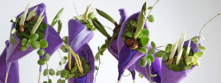 creative way of using bulbflowers